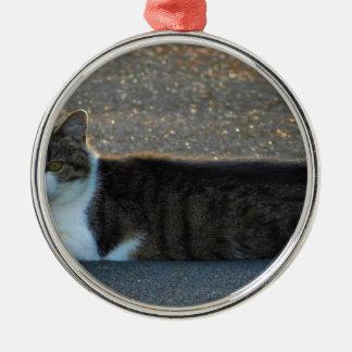 Katze Rundes Silberfarbenes Ornament