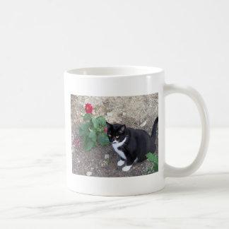 Katze Tasse