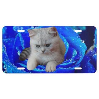 Katze und Rose US Nummernschild