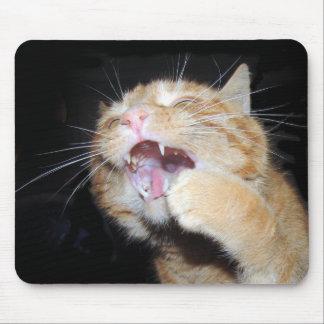 Katze will die Maus Mousepads