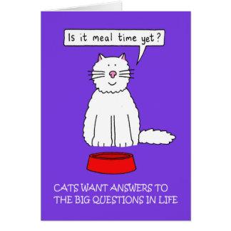 Katzen benötigen Antworten zu den Fragen Karte