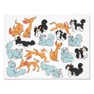 Katzen! Fotodruck