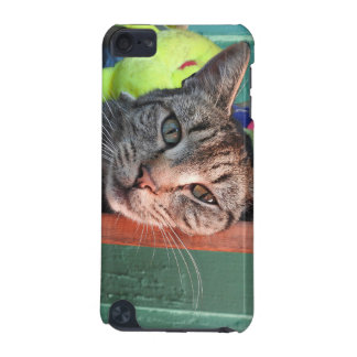 Katzen-Liebe iPod Touch 5G Hülle