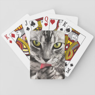 Katzen-Spielkarten Spielkarten