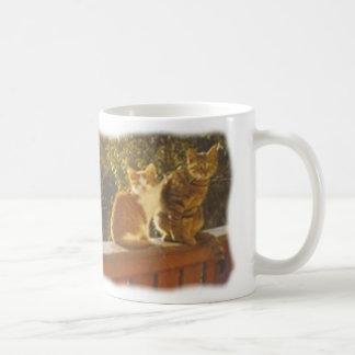 Katzen Tasse