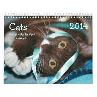 Katzen tragen 2014 ein kalender