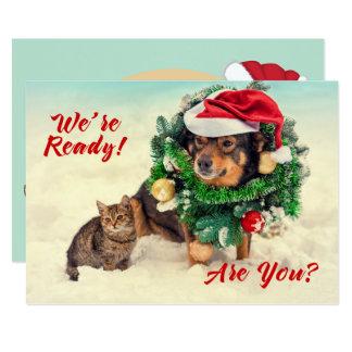 Katzen-u. Hundedoppelseitige Weihnachtskarte Karte