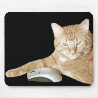 Katzen- und Computermaus Mauspads