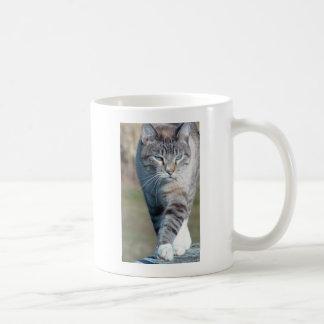 Katzen-Weg Tasse