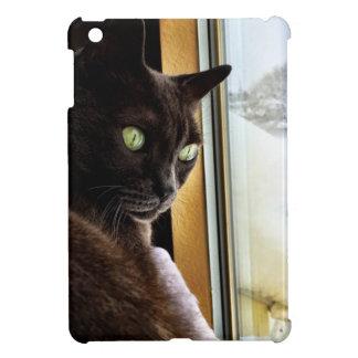 Katzenaugen reflektiert im Schnee iPad Mini Cover