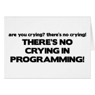 Kein Schreien bei der Programmierung Karte