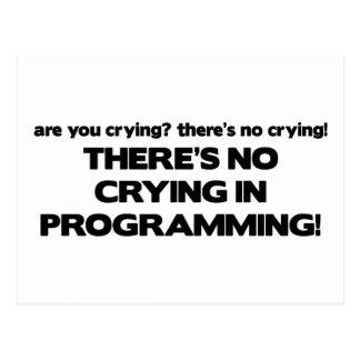 Kein Schreien bei der Programmierung Postkarte