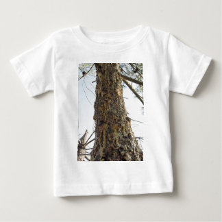 Kieferharz auf dem Stamm Baby T-shirt