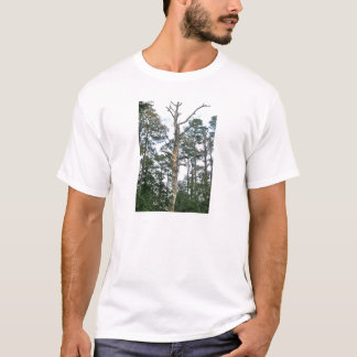 Kiefern auf Strand-Naturlehrpfad OBX NC T-Shirt