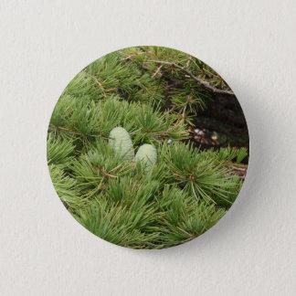 Kiefern-Kegel Runder Button 5,1 Cm