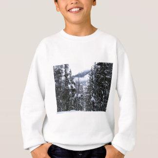 Kiefern Sweatshirt