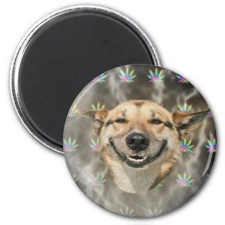 Kiffer-Hund Runder Magnet 5,1 Cm