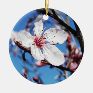 Kirschblüte 2 rundes keramik ornament