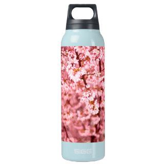 Kirschblüte-Kirschblüte Isolierte Flasche