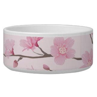 Kirschblüte - transparenter Hintergrund Napf