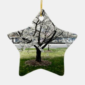 Kirschblüten-Baum Keramik Stern-Ornament
