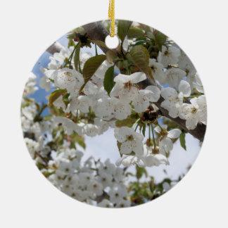 Kirschblüten-Blüte Rundes Keramik Ornament