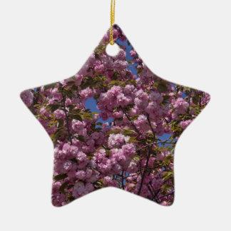 Kirschblüten in der Blüte Keramik Stern-Ornament