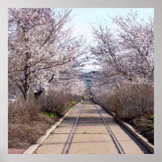 Kirschblüten und Bahnen Philadelphia Poster