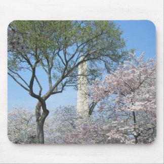 Kirschblüten und das Washington-Monument in DC Mauspads