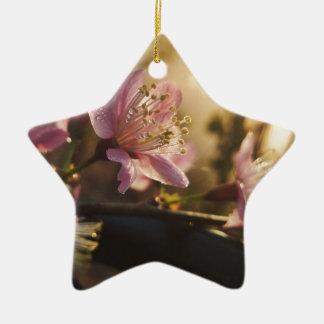 Kirscheblüte Keramik Stern-Ornament