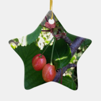 Kirschen, die Rot drehen Keramik Stern-Ornament