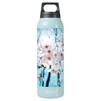 Kirschkirschblüte-Blüte Isolierte Flasche