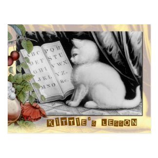 Kitties ABC-Lektion Postkarte