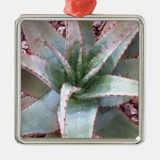 Kleine Agave Quadratisches Silberfarbenes Ornament
