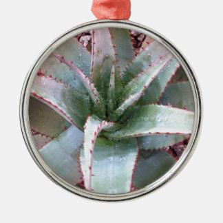 Kleine Agave Rundes Silberfarbenes Ornament