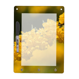 Kleine gelbe Blumen Memoboard