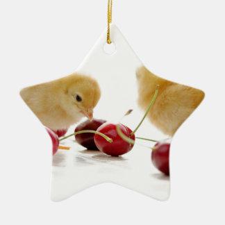 Kleine Küken und frische Kirschen Keramik Stern-Ornament