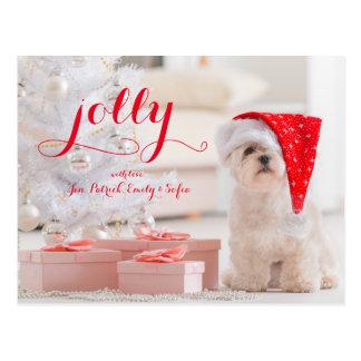 Kleiner Hundemaltesisches Sitzen mit Geschenken Postkarte