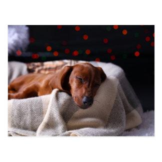 Kleiner niedlicher Dackel-Welpe auf Weihnachten Postkarte