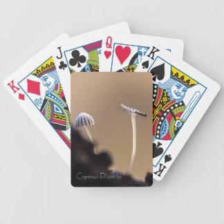 Kleiner Pilz Poker Karten