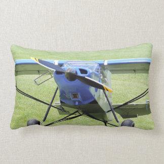 Kleines Flugzeug geparkt auf dem Gras Lendenkissen