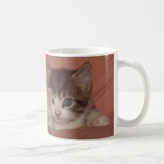Kleines Kätzchen Tasse