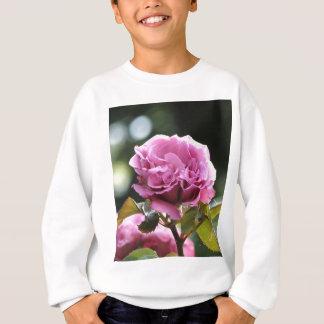 Kletterndes Engels-Gesicht 196 Sweatshirt