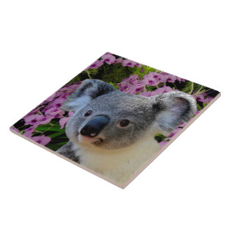 Koala und Orchideen Große Quadratische Fliese