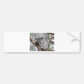 Koalabär Autoaufkleber