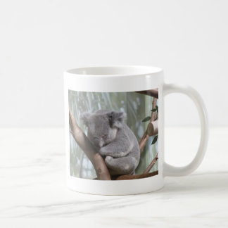 Koalabär Kaffeetasse
