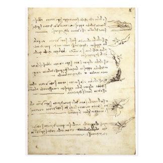 Kodex auf dem Flug der Vögel durch Leonardo da Postkarte