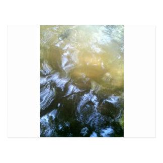 Koi und Wasser durch Bernadette Sebastiani Postkarte
