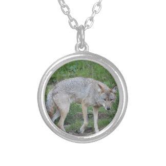 Kojote-Sammlung Halskette Mit Rundem Anhänger