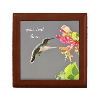 Kolibri, der auf rosa Blumen füttert Erinnerungskiste